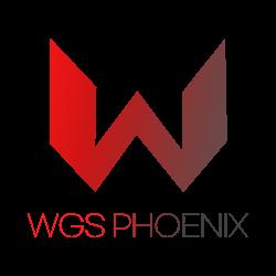 World Game Star Phoenix